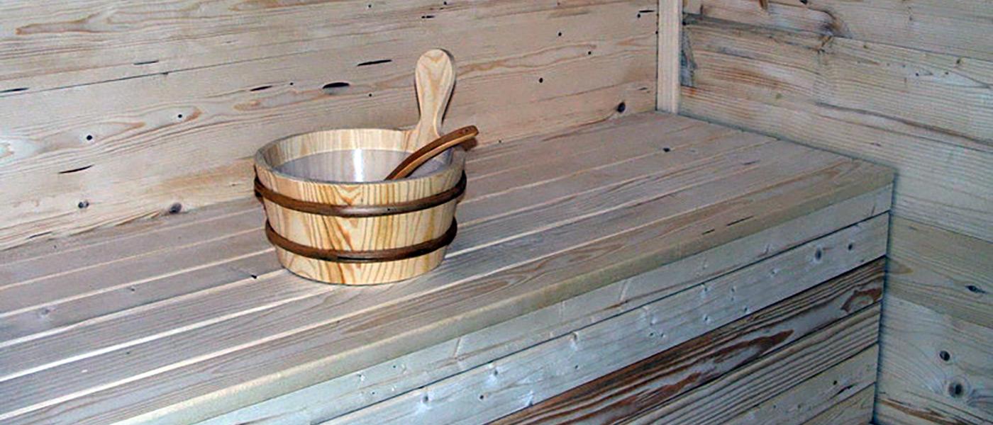 JelaDOM Saune